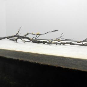 Exhibition Essay, Michael Needham, August2012